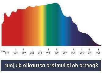 Quelle couleur D ampoule LED choisir ?