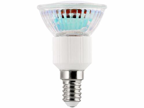 Quelles sont les ampoules les plus économiques ?