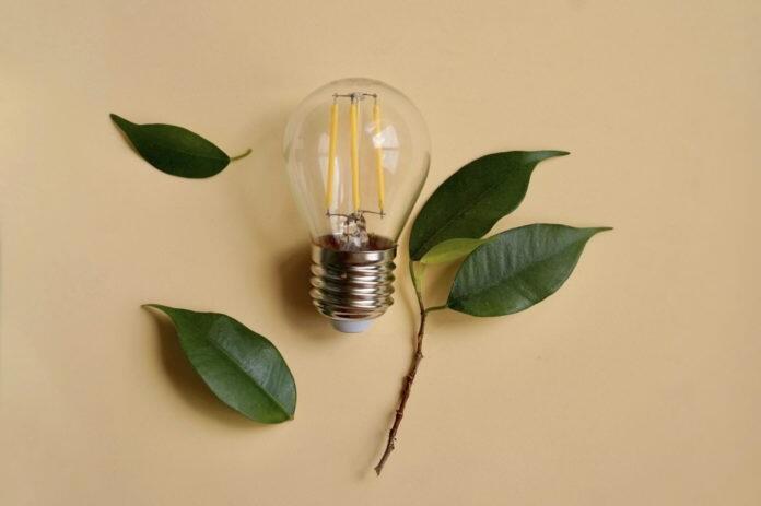 Quelles sont les ampoules qui consomment le moins ?
