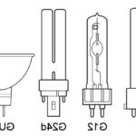 Quels sont les différents types d'ampoules ?
